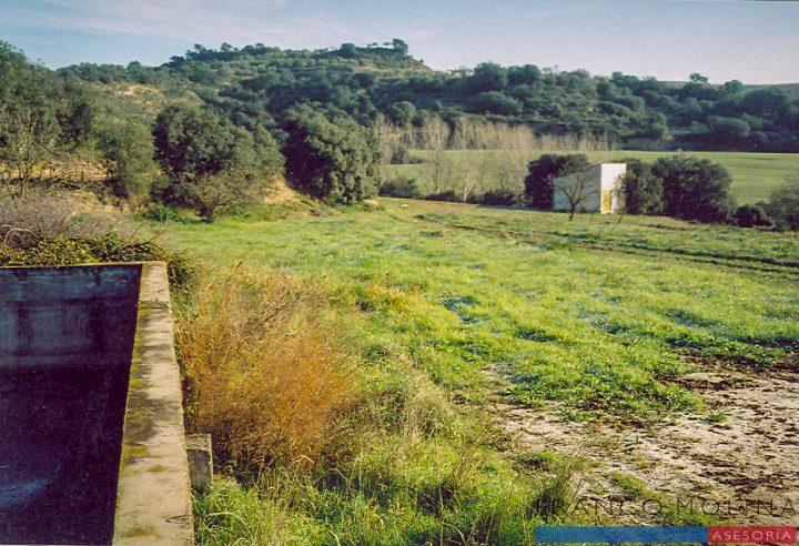 Terreno carretera Cregenzán